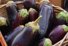 Aubergines fraîches de ferme Photo libre de droits