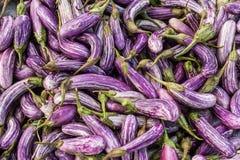 Aubergines fraîches sur le marché Images stock