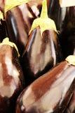 Aubergines noires Photo libre de droits