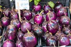 Aubergines for sale at a market Royalty Free Stock Photography
