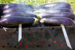Aubergines on skewers on the grill Stock Image