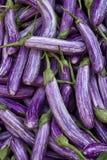 Aubergines sur le marché végétal Photographie stock libre de droits