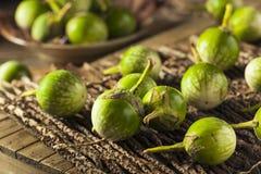 Aubergines thaïlandaises vertes crues Photo stock
