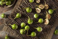 Aubergines thaïlandaises vertes crues Photos stock