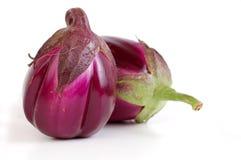 auberginewhite Arkivbilder