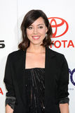 Aubrey Plaza. LOS ANGELES - OCT 15:  Aubrey Plaza arriving at the 2011 Environmental Media Awards at the Warner Brothers Studio on October 15, 2011 in Beverly Stock Image