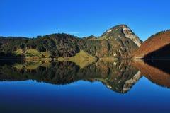 Aubrig bruto que espelha no lago Wagital fotografia de stock