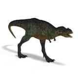 aucasaurus恐龙 免版税库存图片