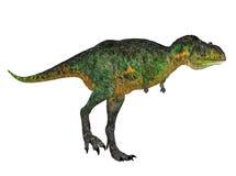 Aucasaurus Royalty Free Stock Images