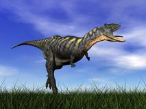 Aucasaurus dinosaur - 3D render Royalty Free Stock Photo