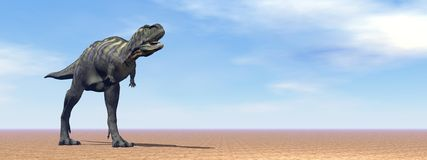 Aucasaurus dinosaur in the desert - 3D render Royalty Free Stock Image