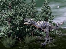 Aucasaurus dinosaur running - 3D render Royalty Free Stock Photography