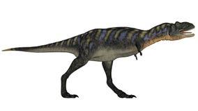Aucasaurus dinosaur walking roaring - 3D render Royalty Free Stock Photography