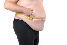 Auch Fett Stockfoto