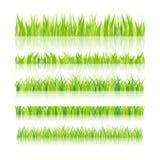 Auch im corel abgehobenen Betrag Eingestellt mit realistica Gras nave Format EPS10 vektor abbildung