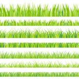 Auch im corel abgehobenen Betrag Eingestellt mit realistica Gras nave Format EPS10 lizenzfreie abbildung