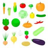 Auch im corel abgehobenen Betrag Set Gemüse Blumenkohl, Kürbis, er lizenzfreie abbildung