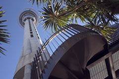 Aucklamd Skytower Stock Images