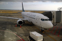 Auckland airport Stock Image