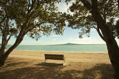 Auckland bays in New Zealand Royalty Free Stock Images