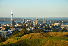 Auckland city Royalty Free Stock Images