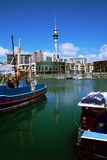 Auckland City. Auckland Skytower from the viaduct harbour royalty free stock photos