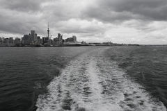 Auckland city and harbor, New Zealand Royalty Free Stock Images