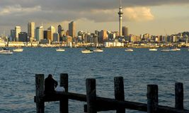 Auckland city and harbour Stock Photos