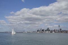 Auckland city and harbour, New Zealand Royalty Free Stock Photos
