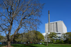 Auckland City Hospital - New Zealand Stock Photos