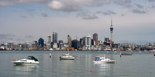 Auckland city, New Zealand. This is Auckland Harbor , New Zealand, in the early morning Royalty Free Stock Image