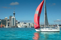 Auckland - The City of Sails Stock Images