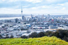 Auckland city Stock Image