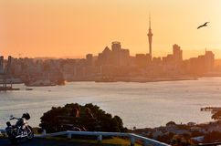 Auckland Cityscape Stock Photo