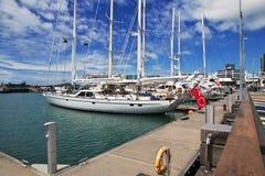 Auckland is een mooie stad in Nieuw Zeeland stock fotografie