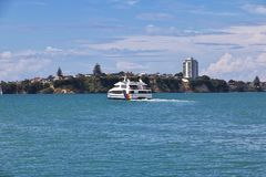 Auckland is een mooie stad in Nieuw Zeeland royalty-vrije stock foto's
