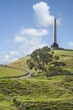 Auckland ein Baum-Hügel Stockfotos