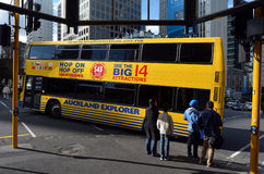 Auckland flygtur på flygtur av utforskare turnerar bussen - Nya Zeeland Royaltyfria Foton
