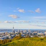 Auckland från monteringen Eden royaltyfri foto