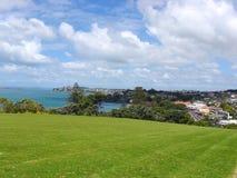Auckland Grassland Royalty Free Stock Image
