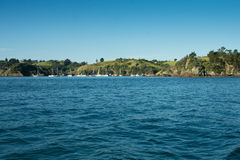 Auckland Harbour - West Bay Royalty Free Stock Images