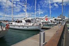 Auckland ist eine sch?ne Stadt in Neuseeland lizenzfreie stockbilder