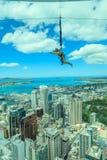 Auckland, la nouvelle Zélande 12 décembre 2013 Un saut à l'élastique f d'homme Image libre de droits