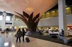 Auckland lotnisko międzynarodowe Obraz Royalty Free