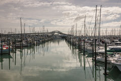 Auckland marina with Harbour Bridge in background Royalty Free Stock Photography