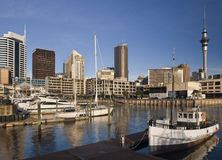 Auckland - New Zealand Royalty Free Stock Photos