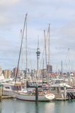 Auckland, New Zealand- December 10, 2013. Auckland sky tower and Royalty Free Stock Image
