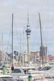 Auckland, New Zealand- December 10, 2013. Auckland skyline from Stock Image