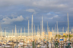 Auckland, New Zealand- December 9, 2013. Boats mooring at the We Royalty Free Stock Images