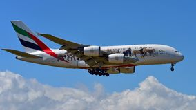 Emirates Airbus A380 super jumbo in United for Wildlife livery landing at Auckland International Airport. AUCKLAND, NEW ZEALAND - DECEMBER 17: Emirates Airbus Royalty Free Stock Image